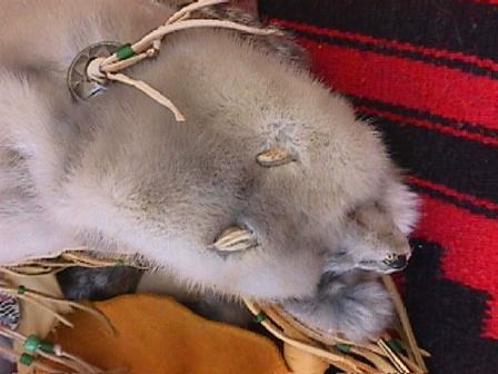 Top of cradleboard, detail of fur mink